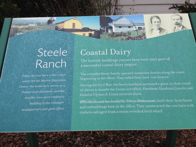 NO. 906 STEELE BROTHERS DAIRY RANCHES -