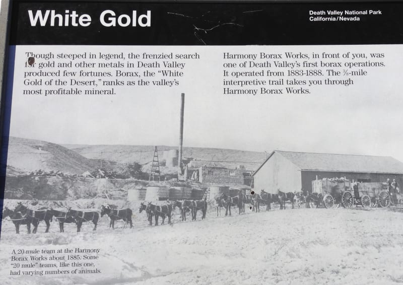 No. 773 OLD HARMONY BORAX WORKS - White Gold