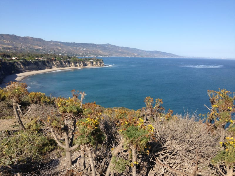 CHL No. 965 - Point Dume - View from Point Dume