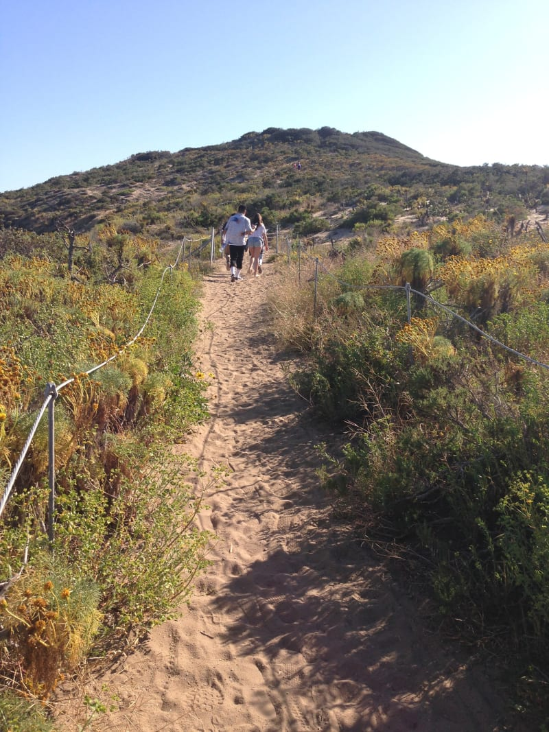CHL No. 965 - Point Dume - Trail up to the marker