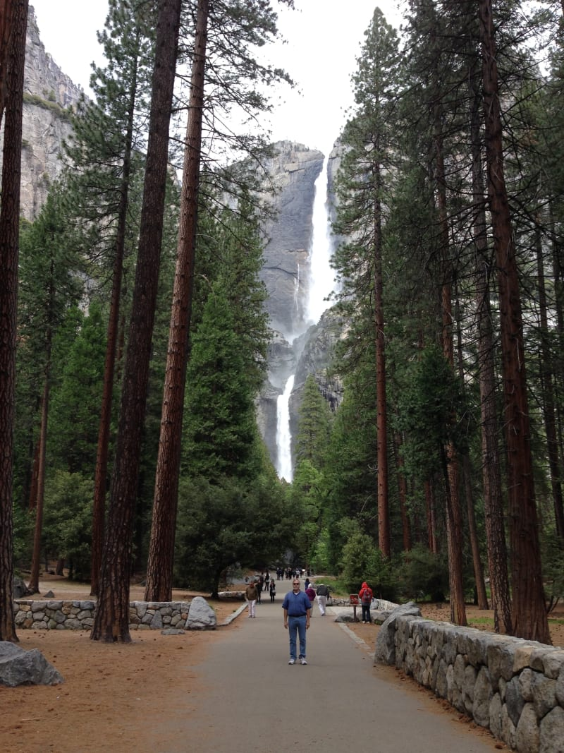 NO. 790 YOSEMITE VALLEY - Yosemite Falls