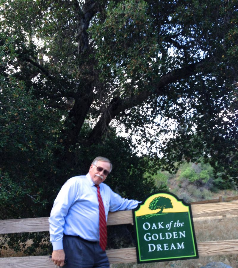 CHL #168 - Oak of the Golden Dream