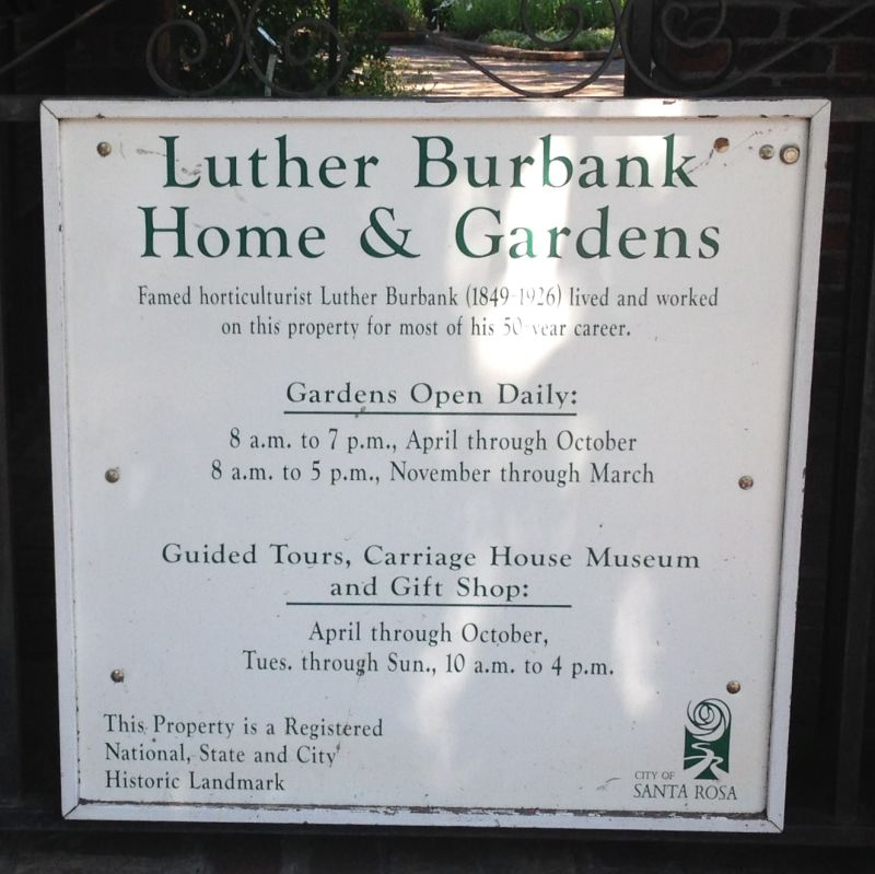 CHL #234 - Luther Burbank House and Garden Site Information
