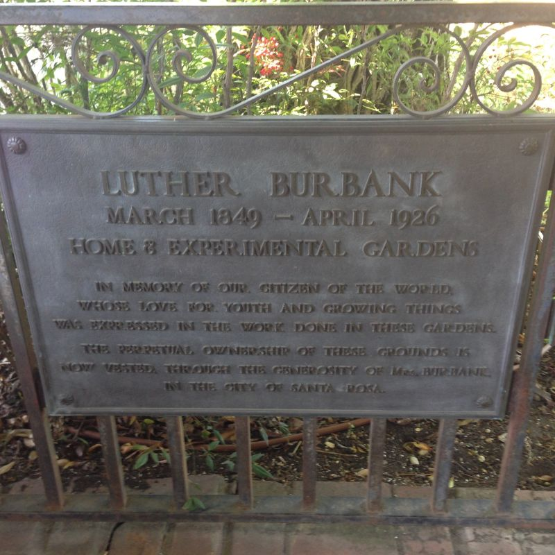 CHL #234 - Luther Burbank House and Garden Private Plaque