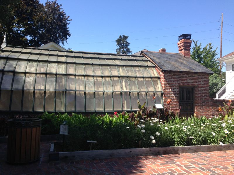 CHL #234 - Luther Burbank House and Garden Green House
