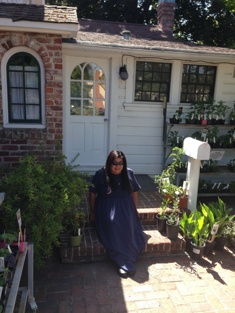 CHL #234 - Luther Burbank House and Garden Back Porch