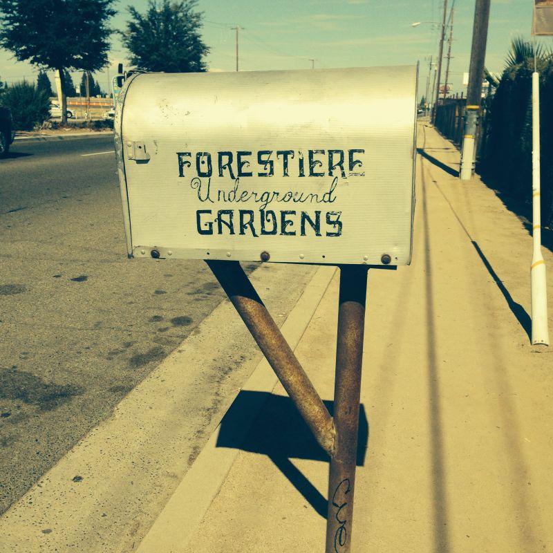 CHL #916  Forestiere Underground Gardens Mail Box