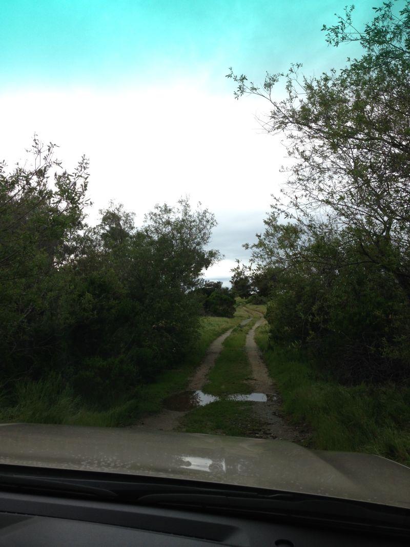 The road to CHL 616 Las Flores Asistencia