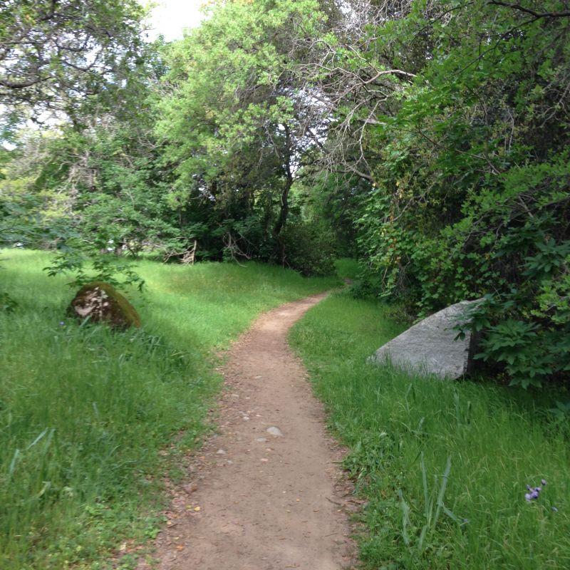 Landmark #585 Pioneer Express Trail