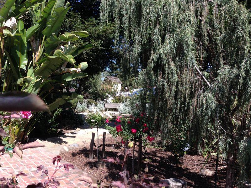 NO. 898 ROBERTO-SUÑOL ADOBE - Garden
