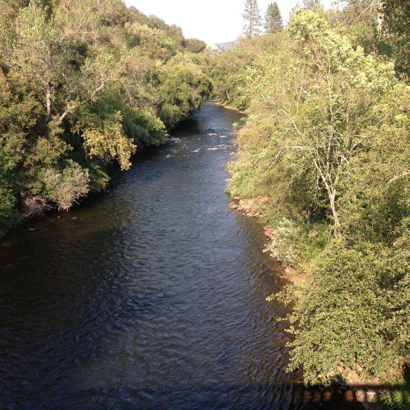 NO. 41 BIG BAR - The Mokelumne River