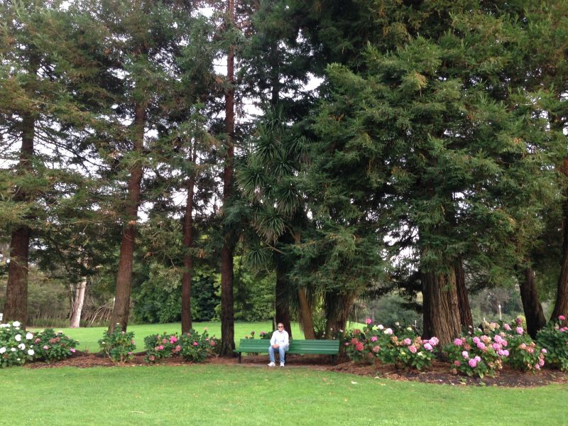 NO. 841 THE CONSERVATORY – Hydrangea Garden