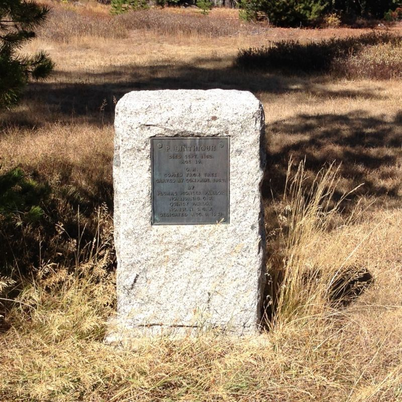 NO. 212 PIONEER GRAVE (GRIZZLY CREEK) - Marker