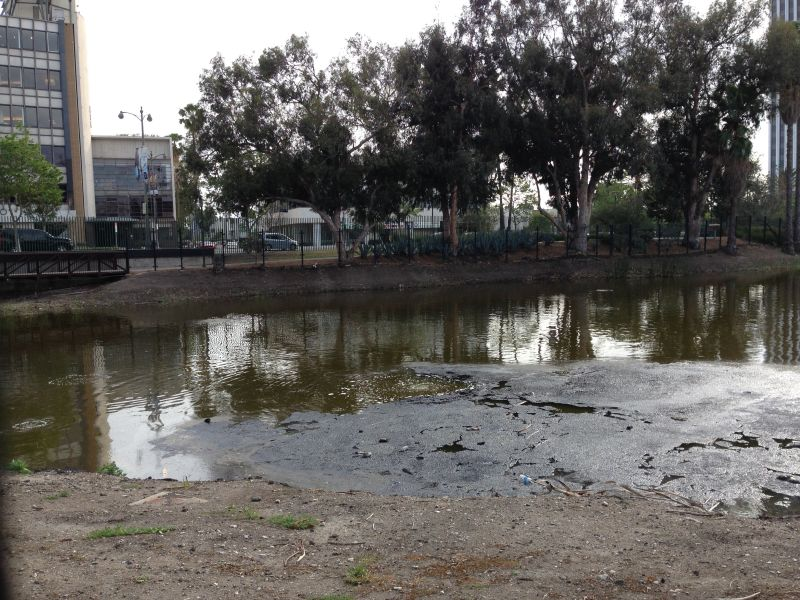 NO. 170 HANCOCK PARK LA BREA - Methane gas bubbling through the tar