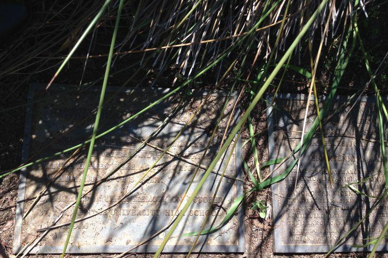 NO. 522 SERRA SPRINGS - Private Plaque hiding under the reeds