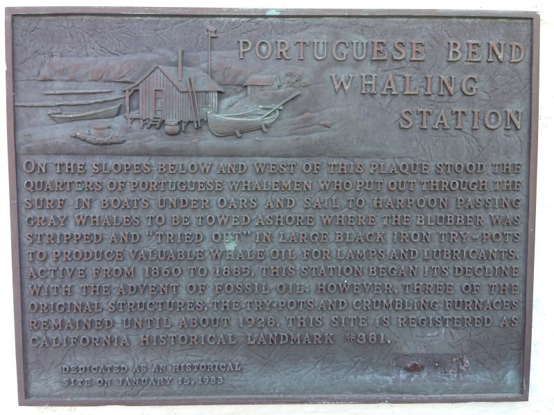 NO. 381 SITE OF OLD WHALING STATION - Private Plaque