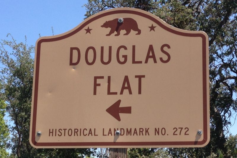 NO. 272 DOUGLAS FLAT - Street Sign