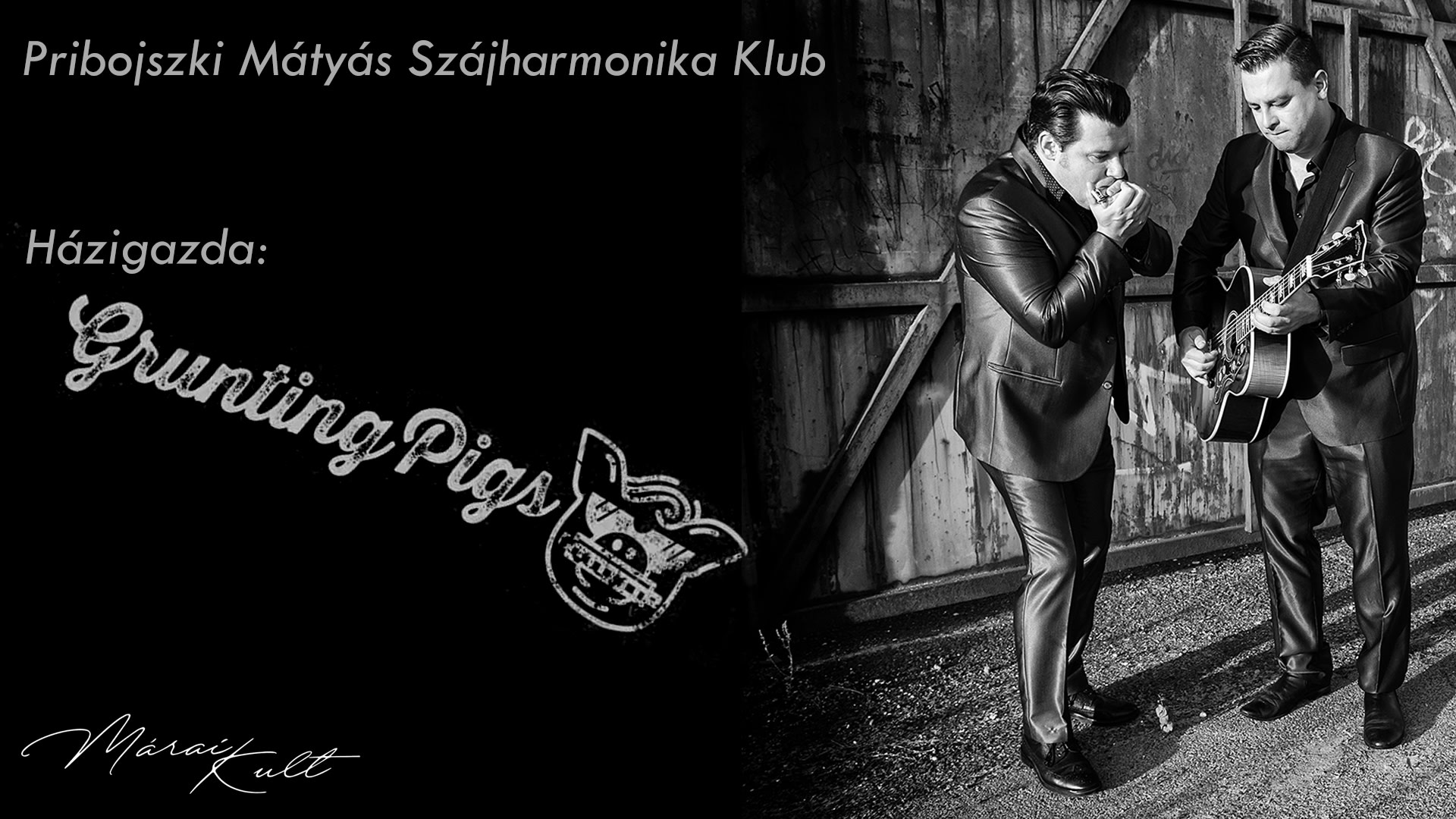 Pribojszki Mátyás Szájharmonika Klub, házigazda: Grunting Pigs