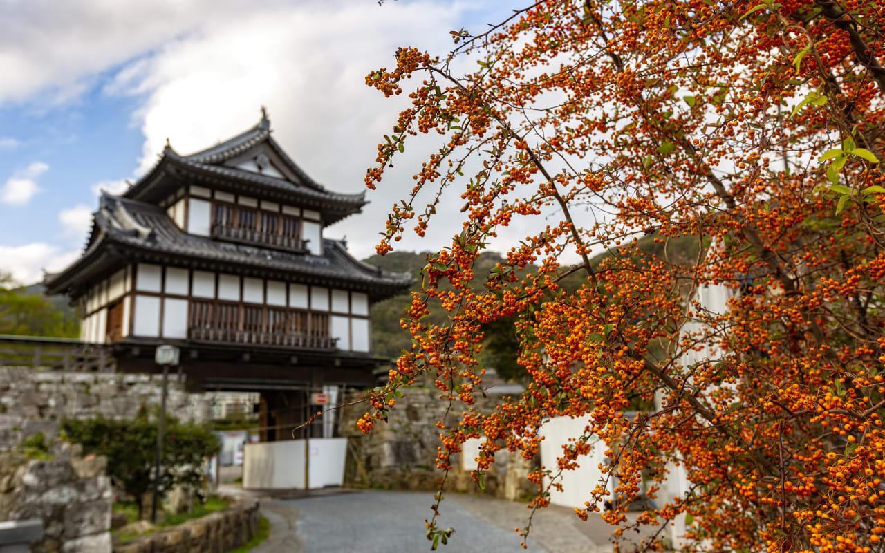 Izuhara Castle Town