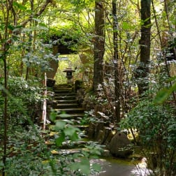 Sanso Tensui: A Luxury Onsen Retreat in the Forests of Oita