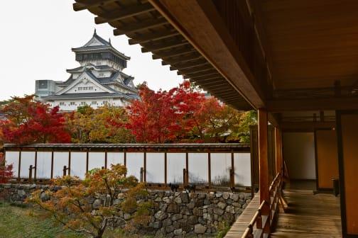 Kitakyushu Highlights: Kokura Castle and Kawachi Wisteria Garden