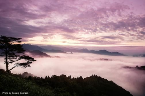 Miyazaki: A nature-rich prefecture just waiting to be discovered