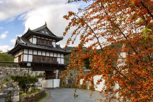 Izuhara Castle Town on Tsushima - Exploring Kyushu's Medieval Past