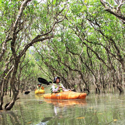 Amami Oshima Canoe/Kayak