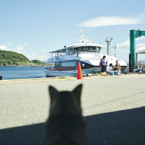 Ainoshima