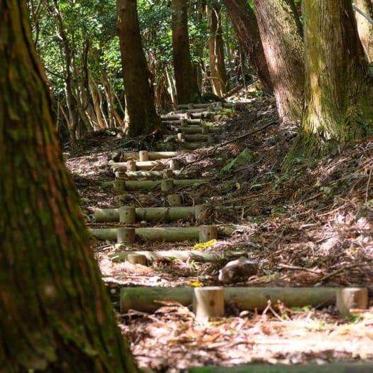 Kunisaki Trekking — Explore Some Unique Sites