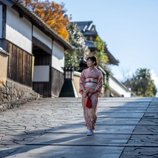 Kitsuki Castle Town
