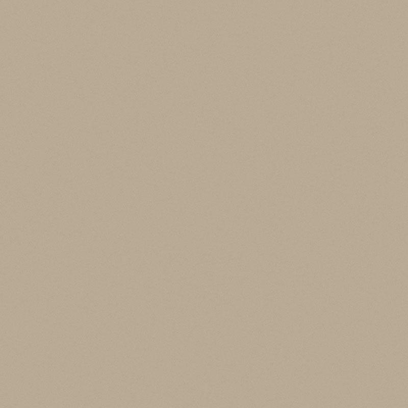 Paint Greige T5 Swatch Teaser