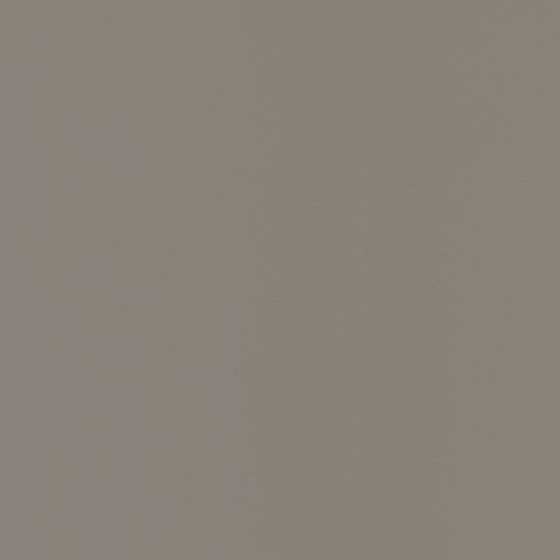 Paint Light Gray Q Swatch Teaser