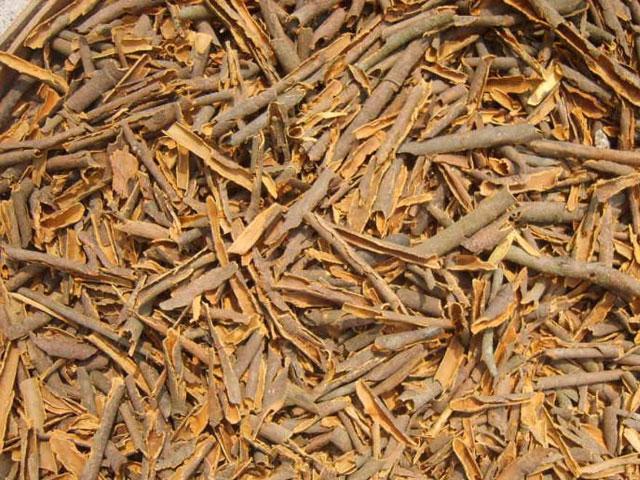 Broken Cassia - Broken Cinnamon