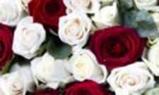Funeral Director Salary In New Jersey CareerExplorer