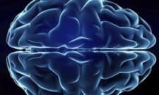 Neurosurgeon salary in New York ‐ CareerExplorer