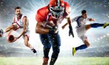 Sports Writer
