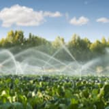 image for Irrigation Technician