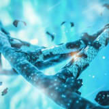 image for Bioinformatics Scientist