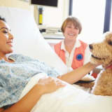 image for Animal Assisted Therapist