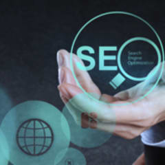 Search Engine Optimization Specialist