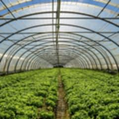 Greenhouse Technician Thumbnail