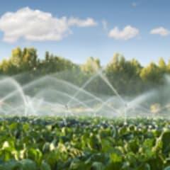 Irrigation Technician