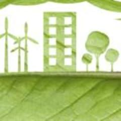 Green Product Marketer Thumbnail
