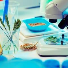 Food Product Development Technician Thumbnail