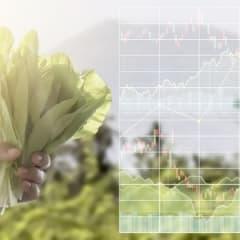 Food Market Analyst Thumbnail