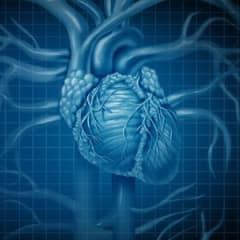 Cardiovascular Technologist and Technician Thumbnail