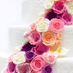 Cake Designer Thumbnail