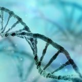 Genetics and Related Studies