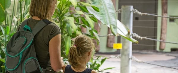 A Zoo Educator teaching a young girl about the various animals kept in the zoo.